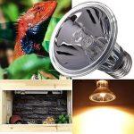 Iluminación y calefactores para reptiles