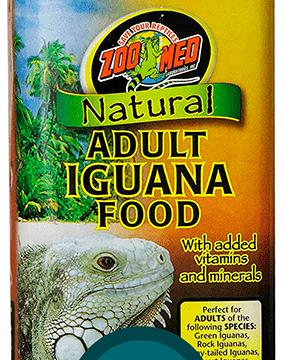 mejor alimentación para iguanas